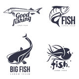 Set logo sea fish. Vector illustration of a simple flat,  on a white background, different logos with fish for your brand, various marine fish, logo for your Royalty Free Stock Image