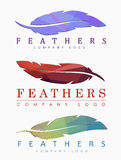 Set of logos of feathers. Logo template of feathers of different colors, with abstract polygonal elements Stock Images