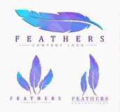 Set of logos of feathers. Logo templates Set of different shapes of feathers. with abstract polygonal elements Stock Photos