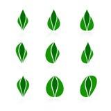 Set of logos - plant Royalty Free Stock Photo