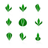 Set of logos - plant Royalty Free Stock Image