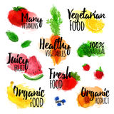 Set of logos, stamps, badges, labels for natural products, healthy food, organic. Fruit, berry and vegetable elements Stock Photography