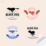 Set of logotypes with running dog for petshops, veterinary, adve Royalty Free Stock Photo