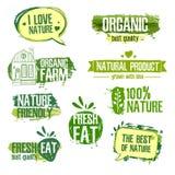 Set logowie, znaczki, odznaki, etykietki dla naturalnego Zdjęcie Stock