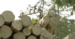 Set of logs being transferred to a truck 4K FS700 Odyssey 7Q stock footage