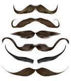 set long curly beard and mustache different colors.beauty style .realistic 3d . stock photos