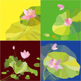 Set of lotus flower background Royalty Free Stock Photos