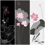 Set of lotus flower texture design. Three set of lotus flower texture design, Chinese traditional style Stock Photos