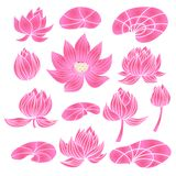 Set of lotus flowers. Beautiful set of flower lotus. Cute elements in cartoon style. Isolated. Perfect for site backgrounds, wrapping paper and fabric design vector illustration