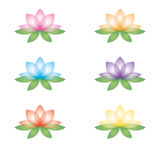 Set of lotus flowers on a white background. Set of six lotus flowers. Isolated objects on a white background. Can be used as icons Stock Image