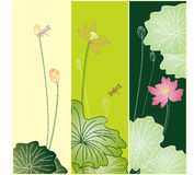 Set of lotus pattern Stock Photography