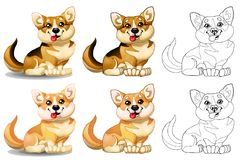 Welsh Corgi and red sphere. The set of lovely dogs of a Welsh Corgi sits, brown and light-red of colorfull and contour line. A cartoon vector illustration Royalty Free Stock Image