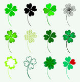 Set of 12 lucky clovers Royalty Free Stock Image