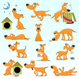 Set lustige Karikaturhunde Lizenzfreie Stockfotografie