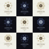 Set Luxury Logos template flourishes. Calligraphic elegant ornament lines. Business sign, identity for Restaurant, Royalty, Boutique, Hotel, Heraldic, Jewelry stock illustration
