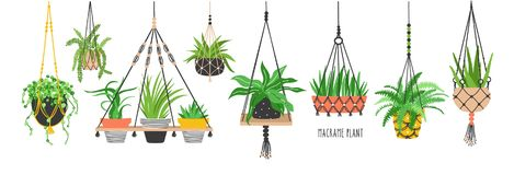 Set of macrame hangers for plants growing in pots. Bundle of hanging planters made of cotton cord, beautiful handmade. Home decorations isolated on white stock illustration
