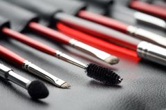 Set of make-up brushes Royalty Free Stock Image