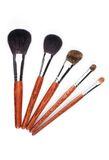 Set of makeup brushes Royalty Free Stock Images
