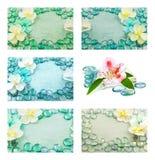 Set makro- widok piękni kwiaty i błękitne szklane krople Zdjęcia Stock