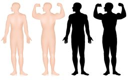 Set of male bodybuilder silhouette, biceps pose isolated on white background vector illustration