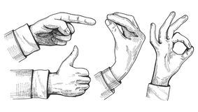 A set of male hand gestures. Vector illustration of a set of male hand gestures. Pointing finger, like or thumb up, Italian gesture and ok sign. Hand drawn royalty free illustration
