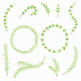 Set malujący akwareli wiosny liście Kwiecisty dekoracyjny elementu projekt również zwrócić corel ilustracji wektora Obrazy Royalty Free