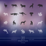 Set of mammals icons Royalty Free Stock Photo
