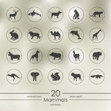 Set of mammals icons Royalty Free Stock Photography