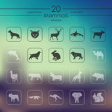 Set of mammals icons Stock Image