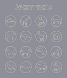 Set of mammals simple icons Royalty Free Stock Photography