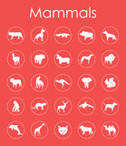 Set of mammals simple icons Stock Photo