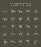 Set of mammals simple icons Stock Image