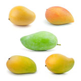 Set of Mango Royalty Free Stock Photo
