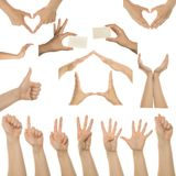 Set of many different hands. Over white background royalty free stock image