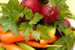 Set of many different vegetables. Royalty Free Stock Photos