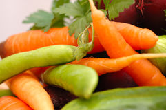 Set of many different vegetables. Royalty Free Stock Photo