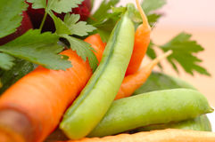 Set of many different vegetables. Royalty Free Stock Photography