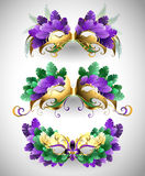 Set of Mardi Gras masks. Set of isolated colorful masks decorated with purple, green, yellow feathers. Festival Mardi Gras Stock Photography