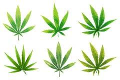 Set marihuan ikony, marihuana leafs royalty ilustracja