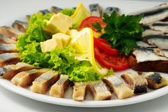The set marinated mackerel,erring, herring fillet, sprat at Borodino bread,  on  the plate Stock Photography
