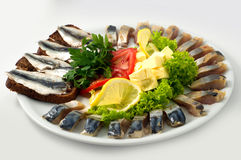 The set marinated mackerel,herring, herring fillet, sprat at Borodino bread,  on  the plate Royalty Free Stock Photo