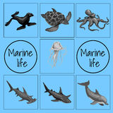 Set of marine animals, card with space for text Royalty Free Stock Photography