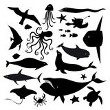 Set of marine animals Royalty Free Stock Photos