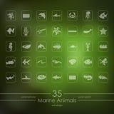Set of marine animals icons Stock Photos