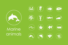Set of marine animals simple icons Royalty Free Stock Photo