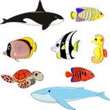 Set of marine animals. Vector illustration: set of marine animals Royalty Free Stock Photos