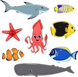 Set of marine animals Stock Image
