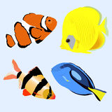 Set marine aquarium fish. collection of stickers of badges and l. Abels with beautiful fish. vector illustration Stock Images