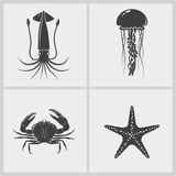 Set of marine creature Royalty Free Stock Photos