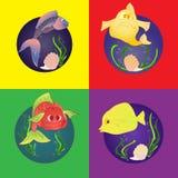 Set marine fish Stock Photo